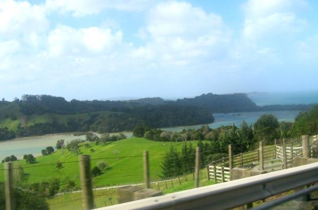 nz countryside 2